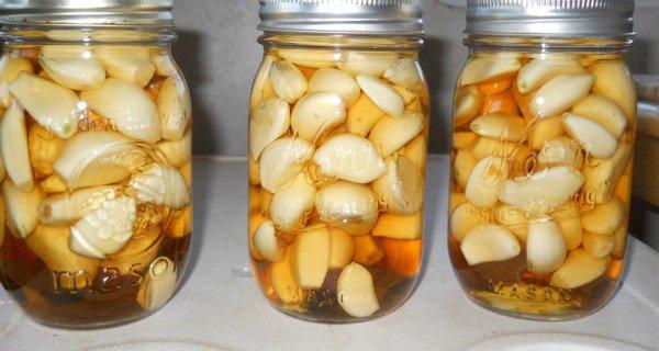 الثوم، خل التفاح، العسل - التركيبة السحرية التي تشفي أغلب الأمراض