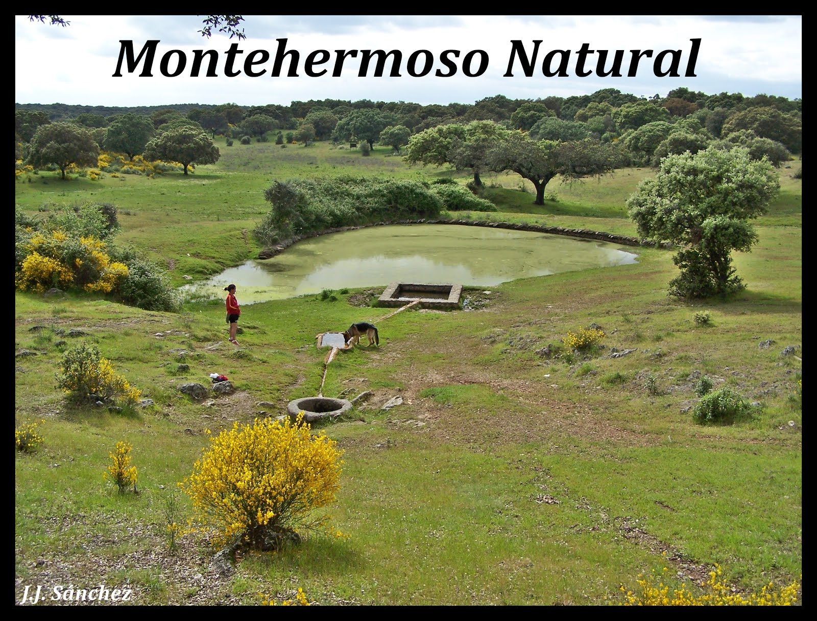 Enlace a Montehermoso Natural