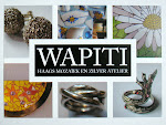 www.wapiti.nl