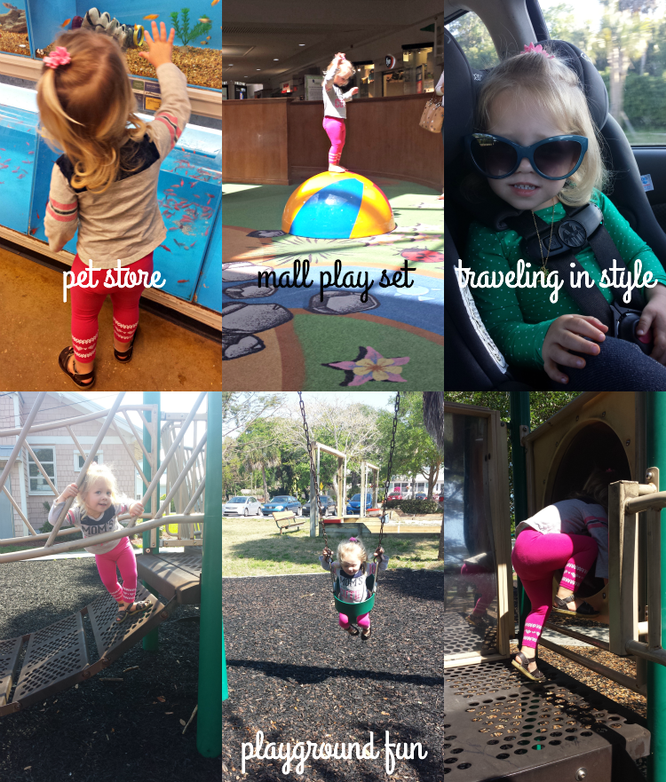 A trip to Petsmart, the dreaded mall play set, toddler sunnies, and playground fun