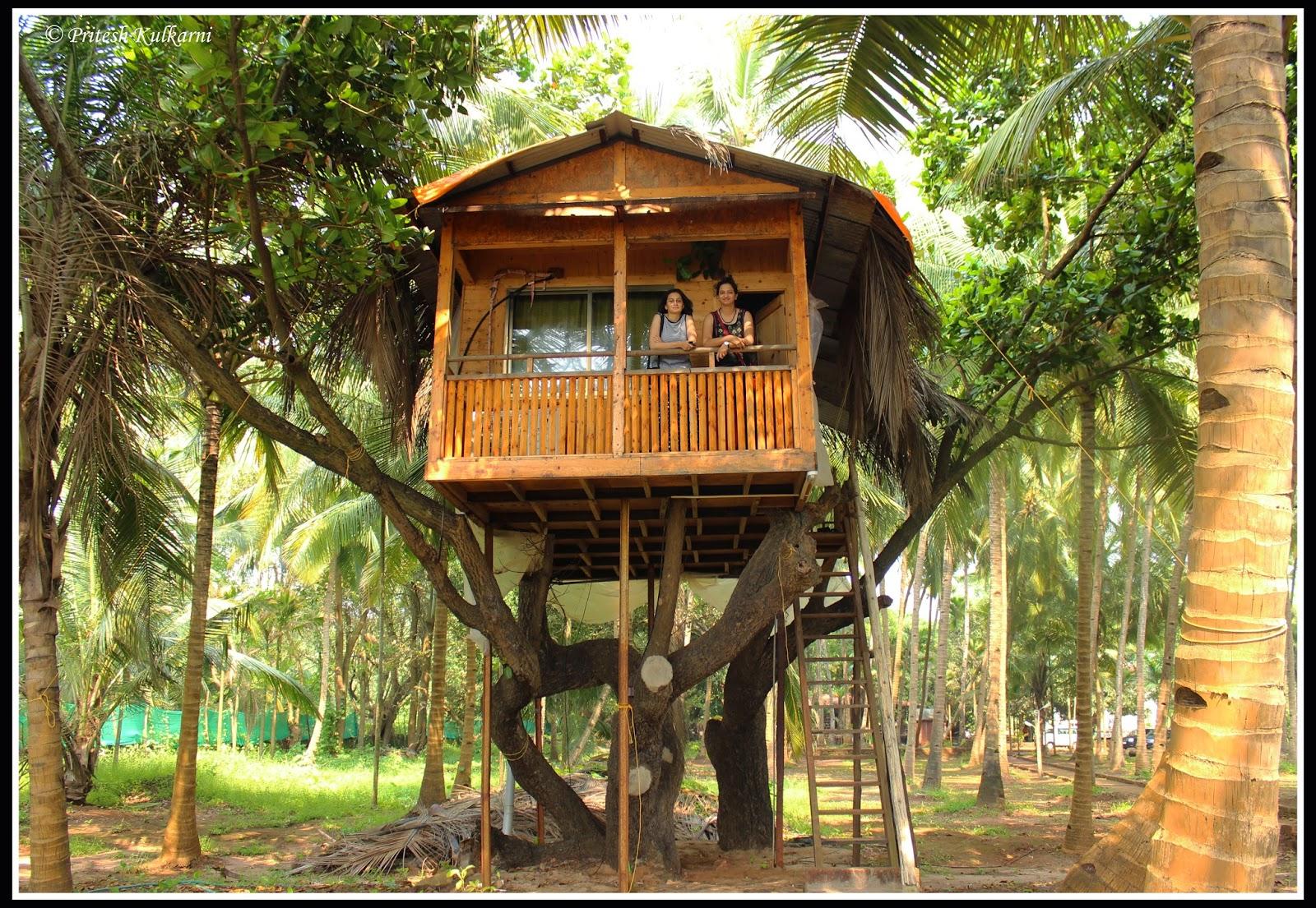 Tree House at Oceano Pearl