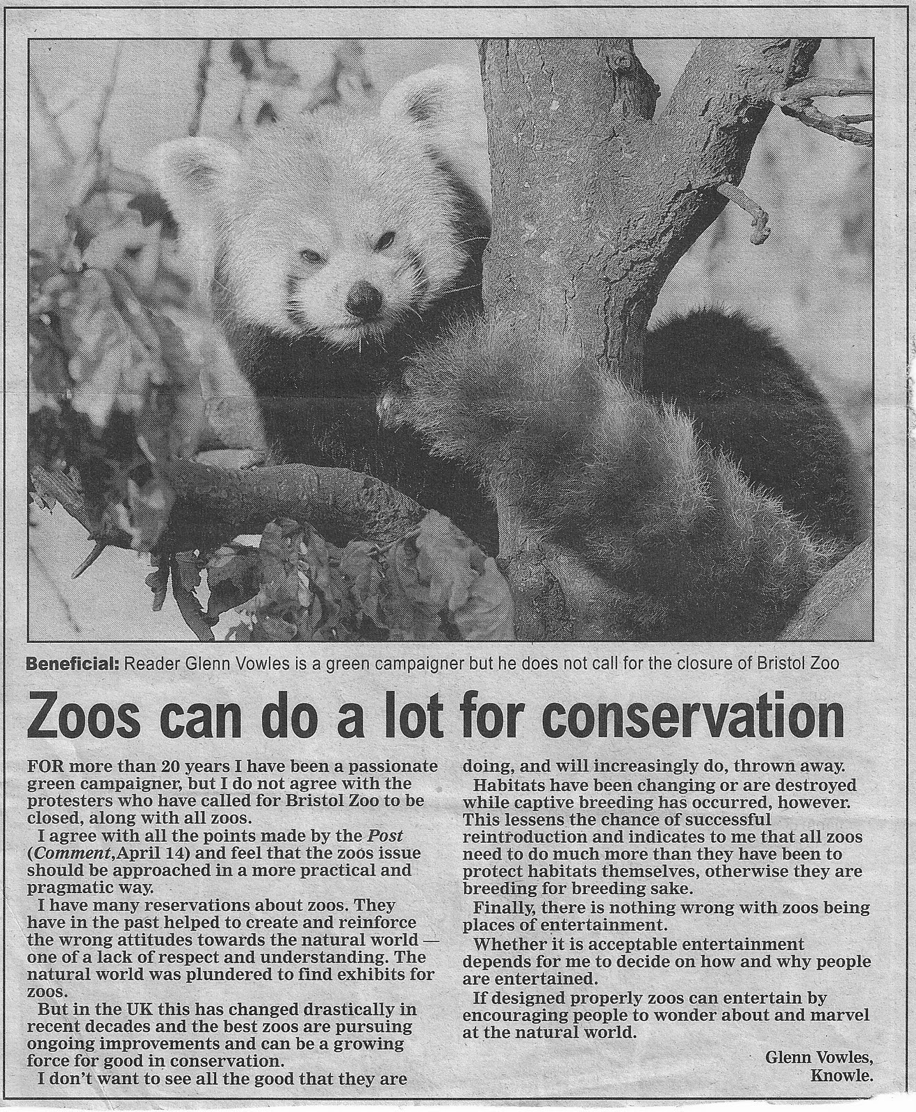 """letter about zoos Let children practice writing the letter """"z"""" and the word zoo write the letters z, o, o on index cards and let children spell the word zoo write the letters z, o, o on index cards and let children spell the word zoo."""