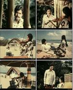 காலைப் பனியும் கொஞ்சம் இசையும் - வான் நிலா நிலா அல்ல