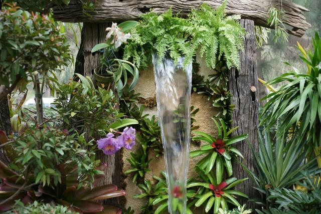 Gardening south florida style bromeliads in the garden for Unusual trees for small gardens