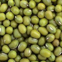 kacang hijau,manfaat kacang hijau, bubur kacang hijau