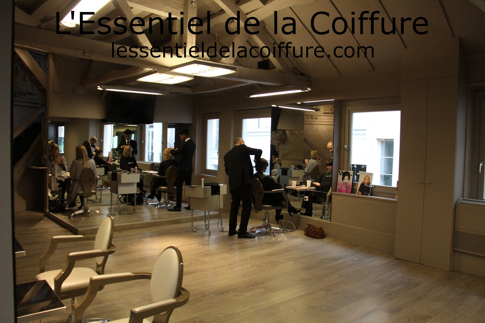 Emejing salon coiffure paris images amazing house design for Salon de coiffure paris 15