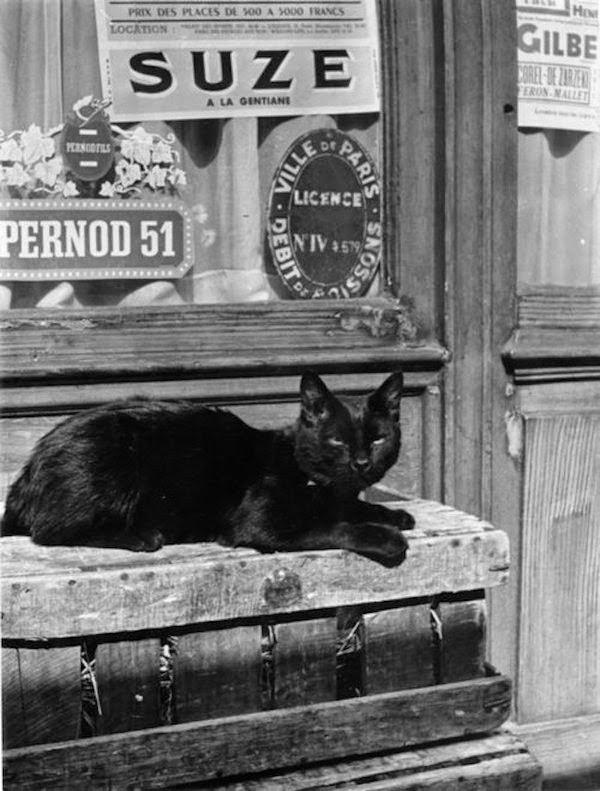 nicholas yantchevsky chats paris photos