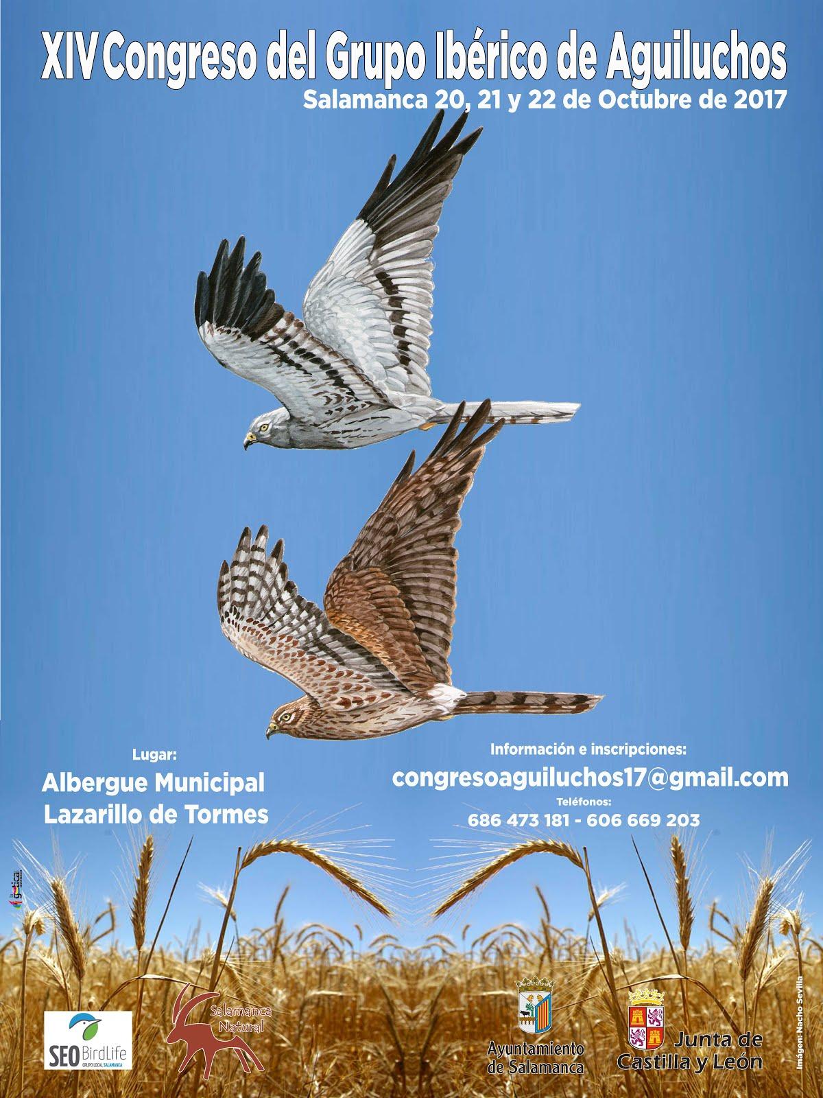 XIV Congreso del Grupo Ibérico de Aguiluchos