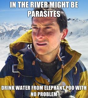 bear grylls parasites