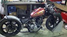 Shea's SR500