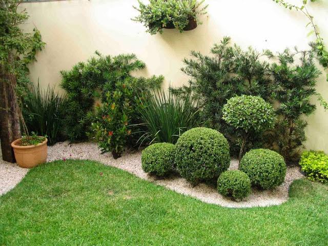 ideias jardim de inverno : ideias jardim de inverno:Jardim de Inverno – veja modelos, dicas e sugestões de quais planta