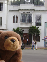 "Teddy Bear visiting ""Rick's cafe"" in Casablanca"