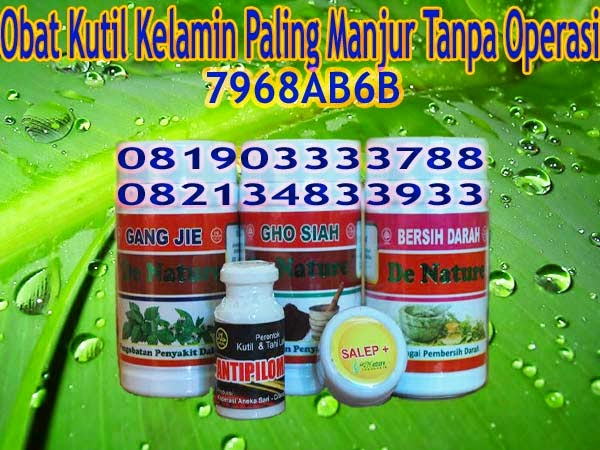 Obat Herbal Kutil