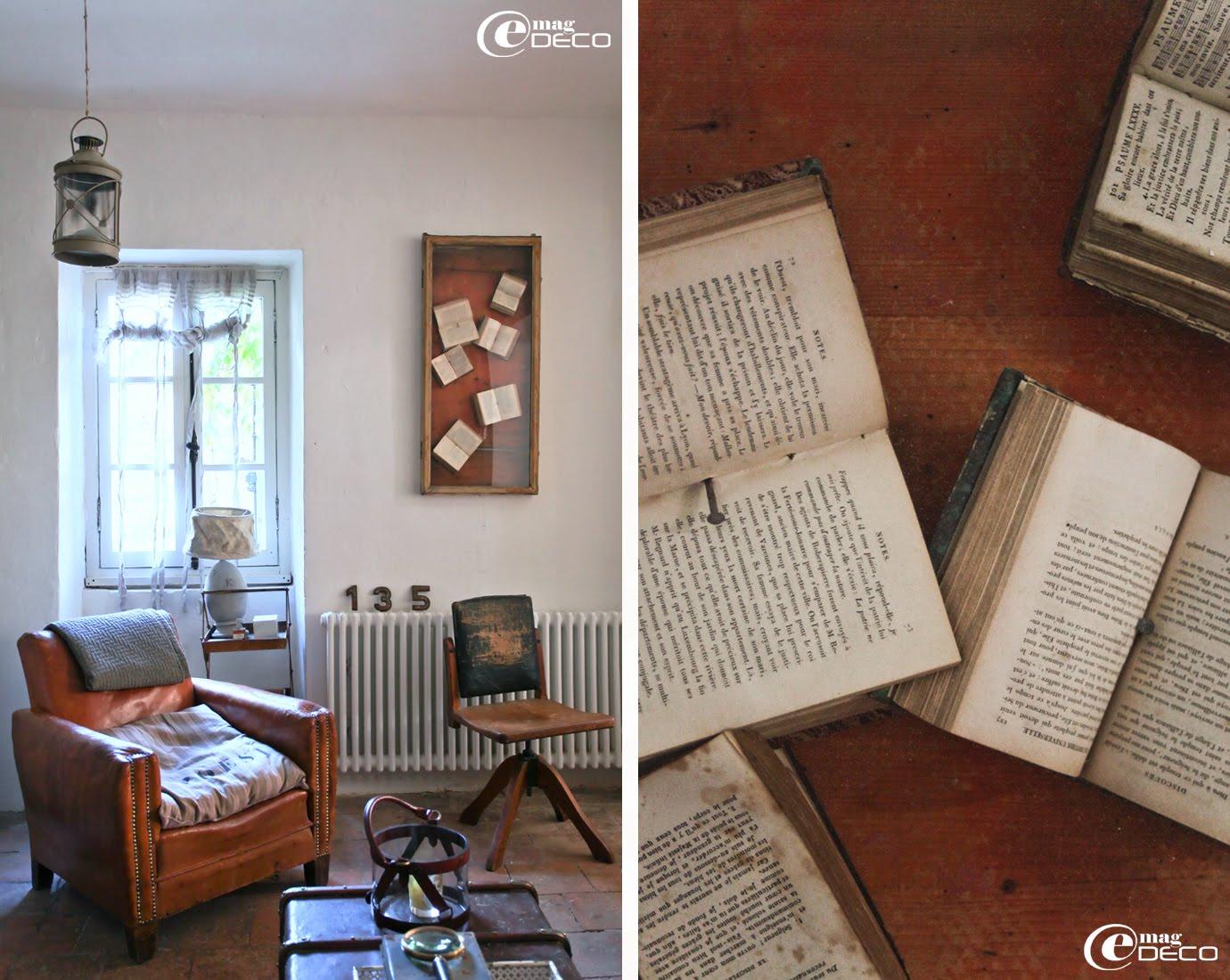Ancienne vitrine de magasin détournée en tableau présentant une collection de bibles anciennes