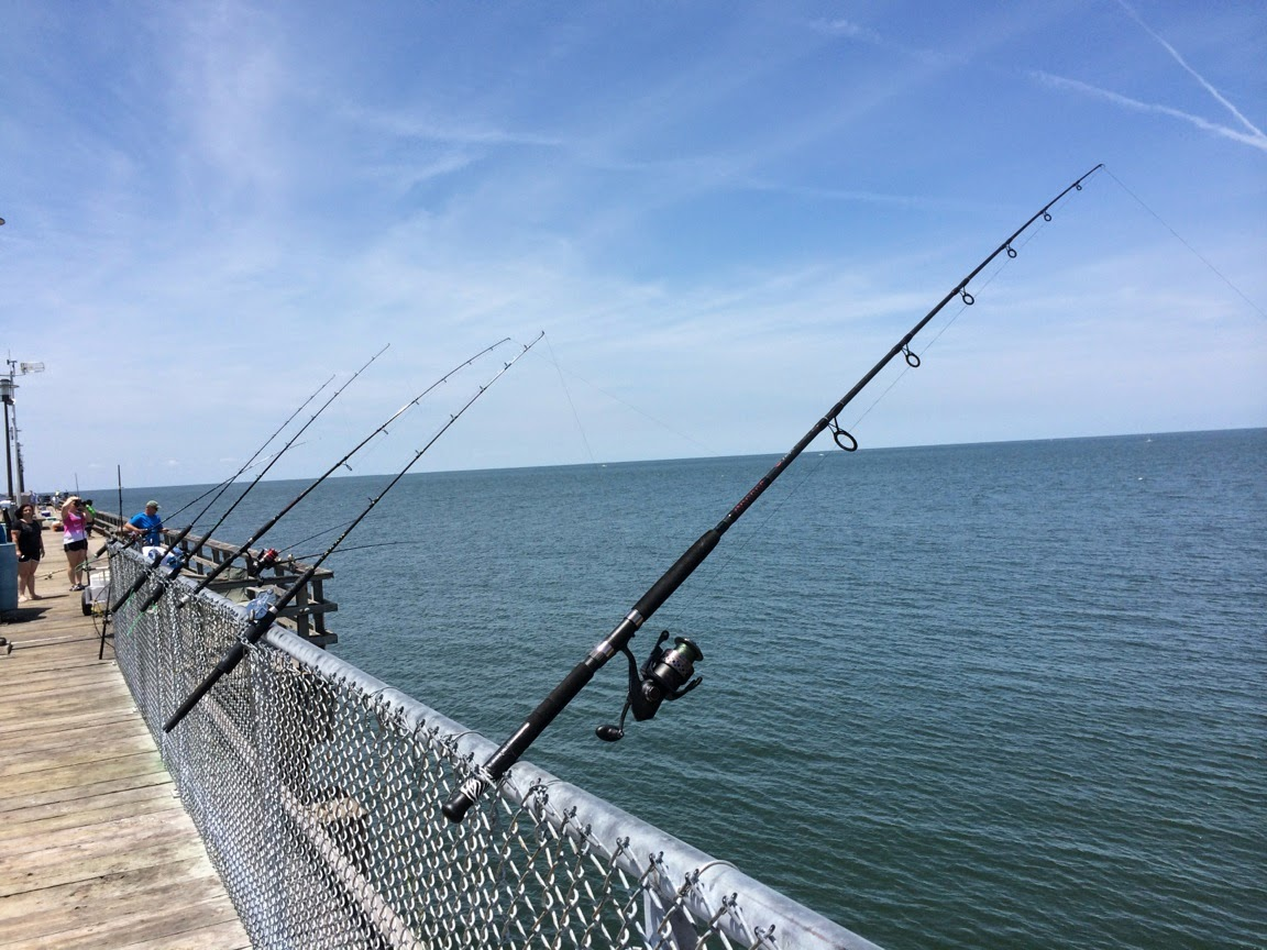The honest hypocrite people fishing from the pier of the for Fishing chesapeake bay