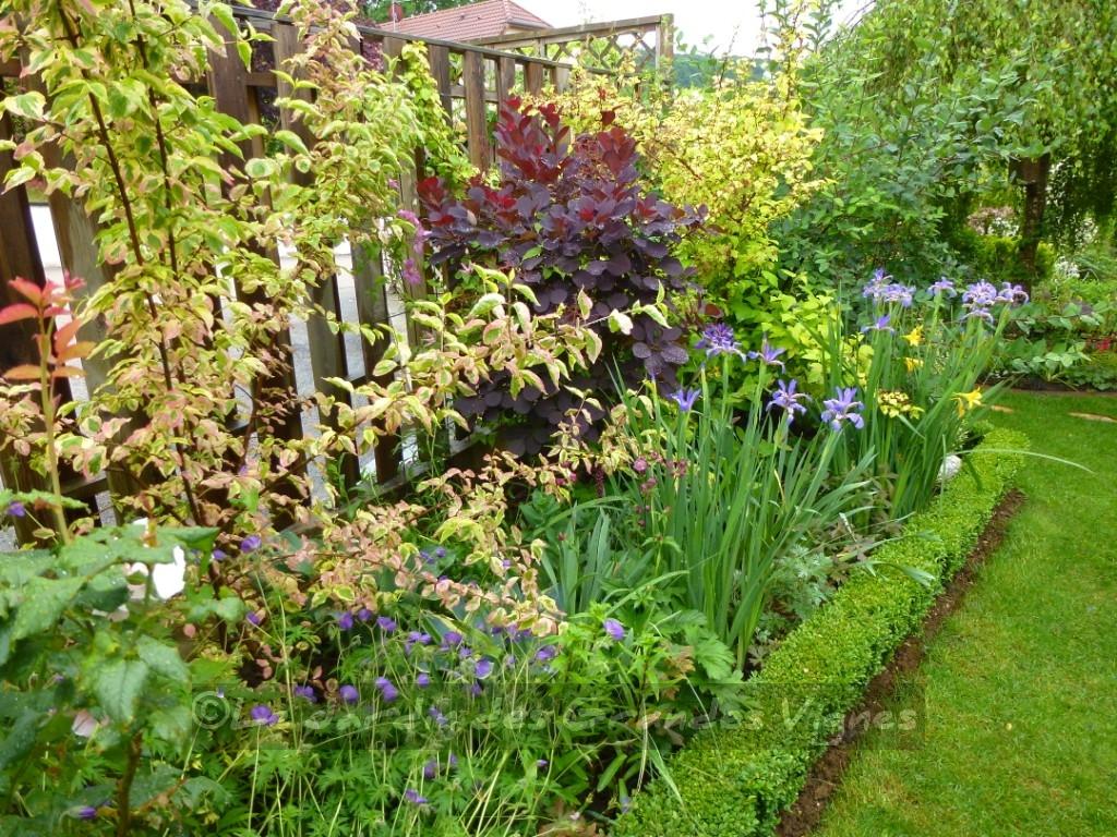 Le jardin des grandes vignes visite au jardin for Au jardin