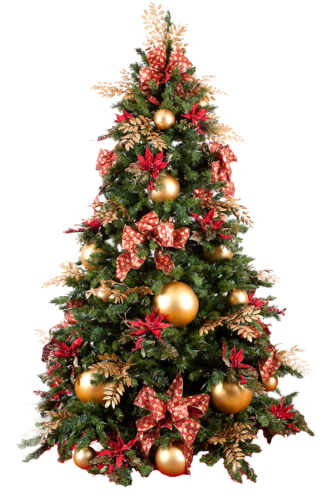 Real Christmas Trees B Q