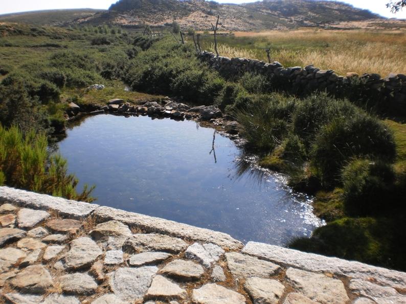 Água Pura da Serra da Freita