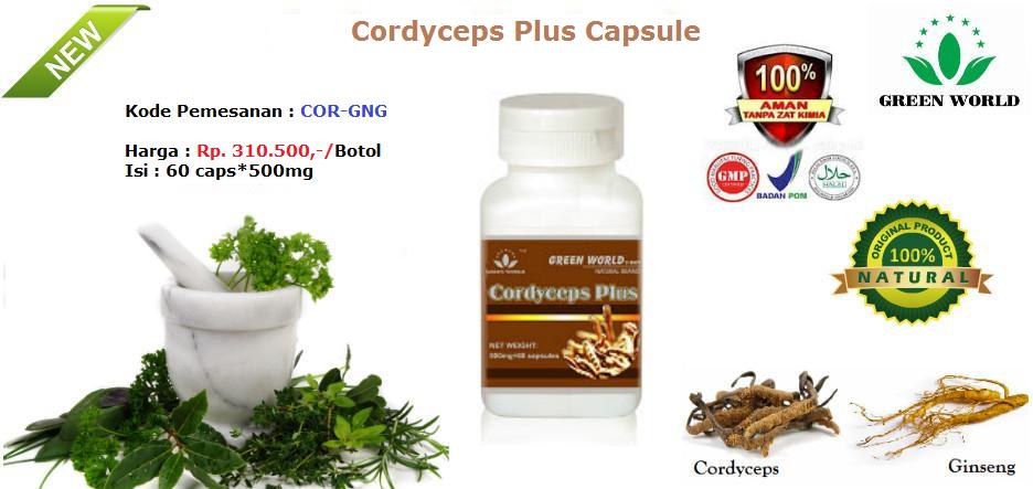 Obat Cordyceps Plus Capsule