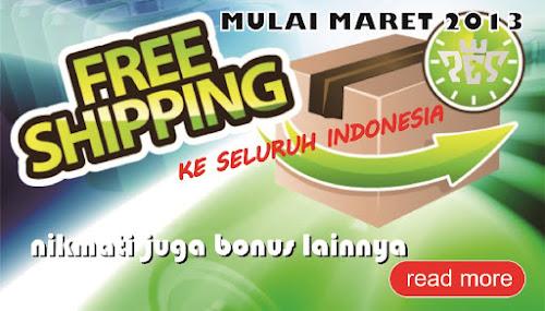 Free Ongkir PSP