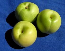 crostatine con la calabria dentro: crostatine alla confettura di merendelle!