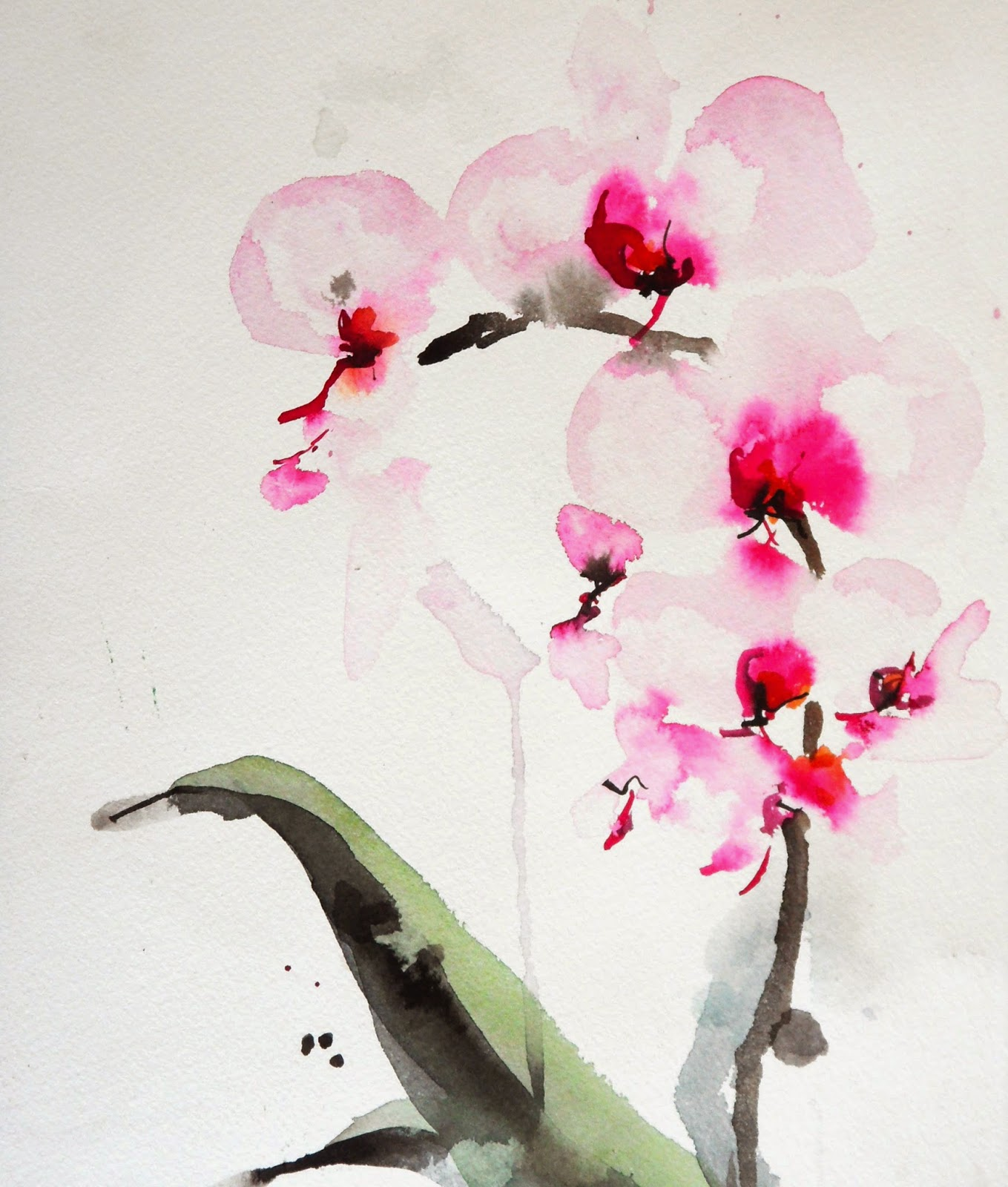 Karin Johannesson Contemporary Watercolour Orchids