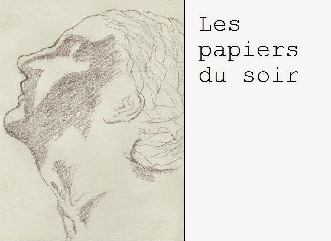Les papiers du soir (Poèmes)