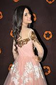 Kanika Kapoor glamorous photos-thumbnail-19