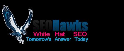 SEO Hawks