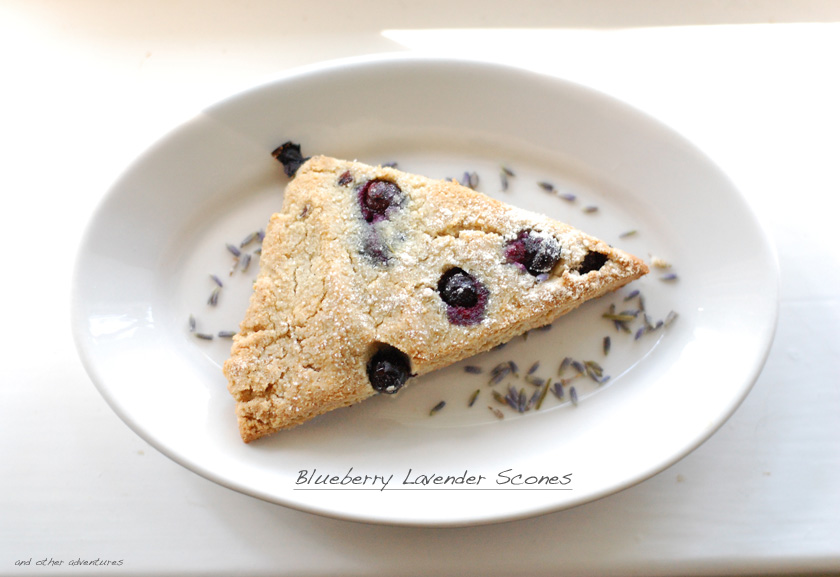 blueberry lavender scones