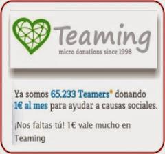 TEAMING Micro Donaciones