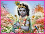 Krishna, Krishna Everywhere and 24 Preceptors