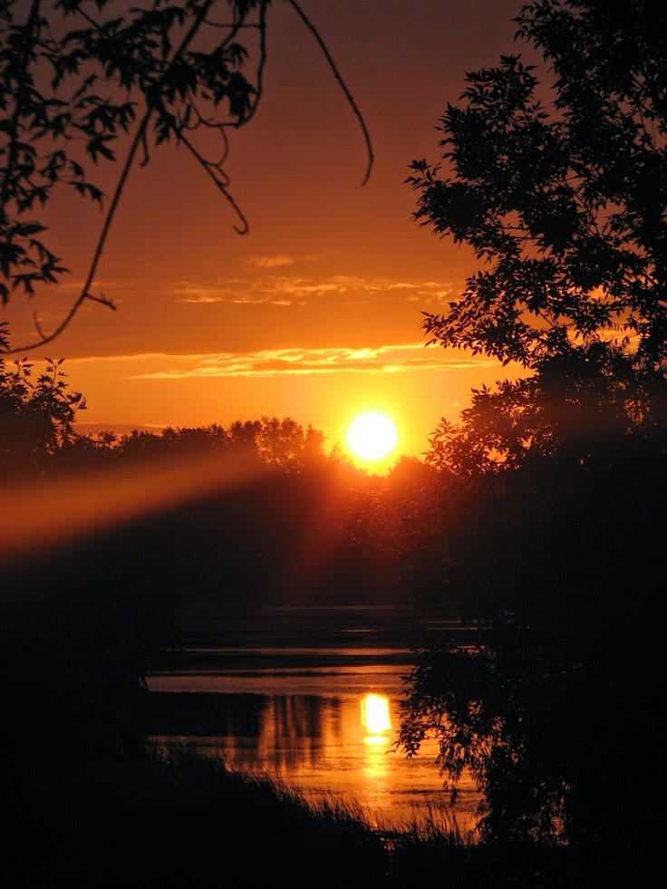 Hình Ảnh chào buổi sáng chào ngày mới với ánh nắng mặt trời
