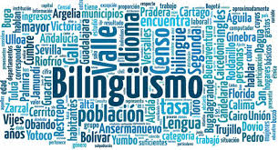 BILINGUAL ZONE IES PUNTA