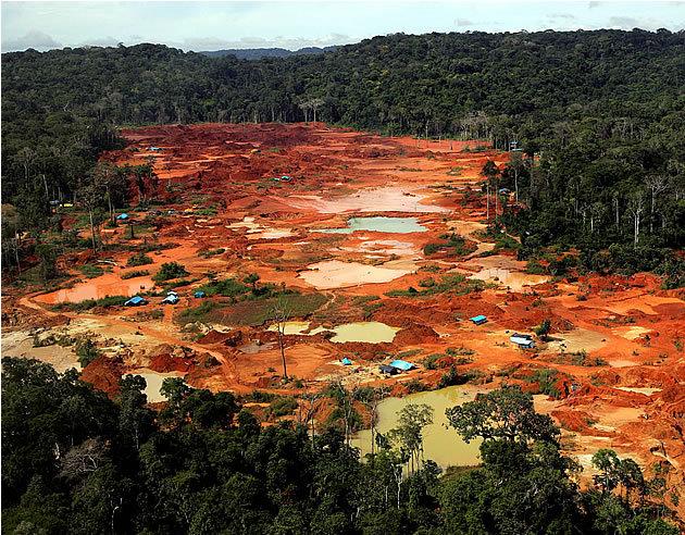 Resultado de imagem para reserva de ouro na amazonia