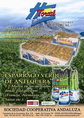 Horticultores El Torcal, lo mejor de nuestra vega.