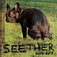 [2013] - Seether 2002-2013 (2CDs)