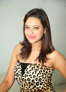 Actress Madalsa Sharma  Pictures at Ramleela 2015 Movie Interview  47.JPG