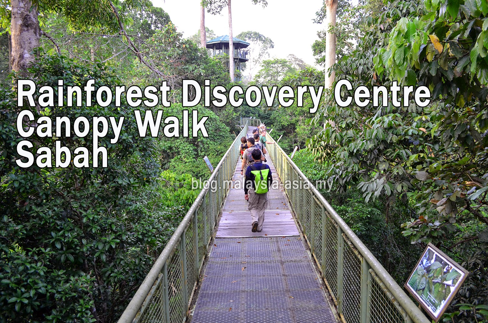 Rainforest Discovery Centre Steel Canopy Walk