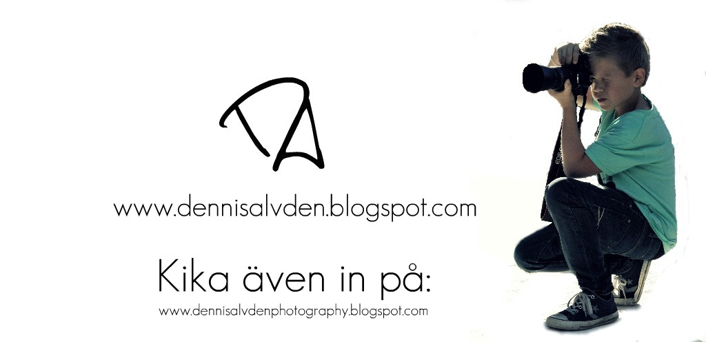 Dennis Alvdén