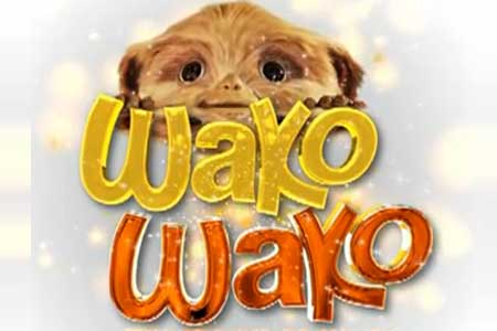 Wako Wako April 3 2012 Episode Replay