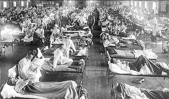1918 influenza epidemic in america essay Definition and summary of the 1918 spanish flu pandemic summary and  definition: spanish flu was a highly contagious, lethal virus that was first  reported in.