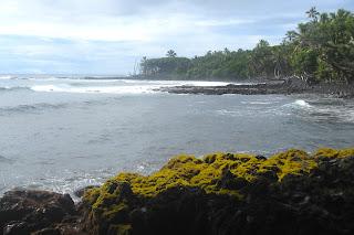 Aloha Joe, Puna, Hawaii