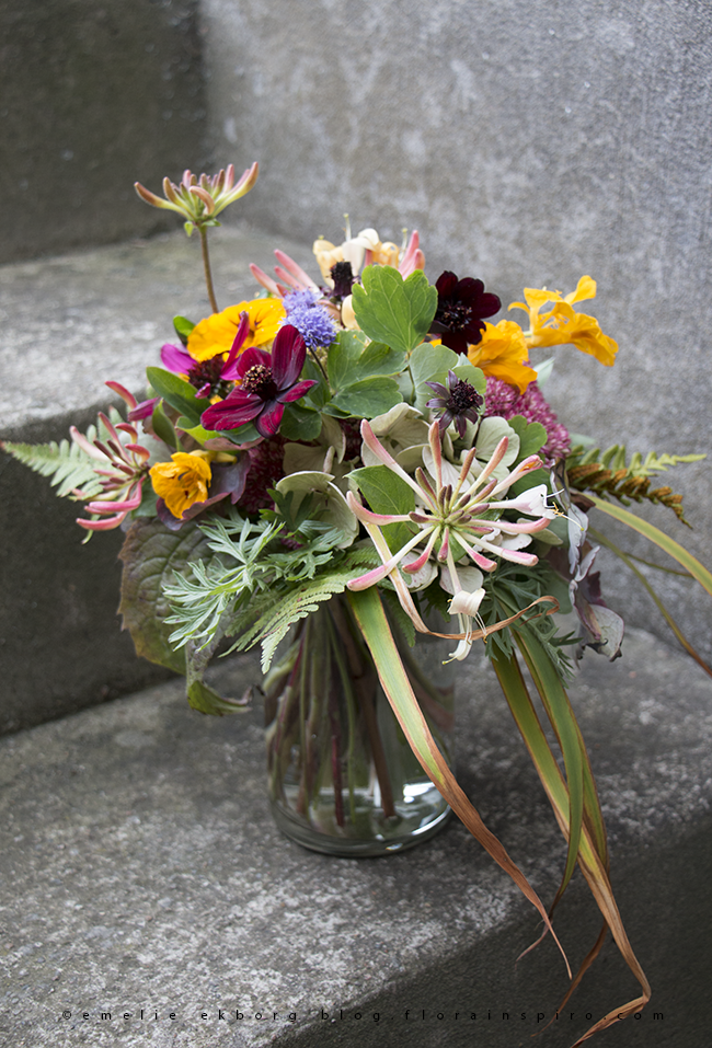 autumn bouquet, wild autumn bouquet, colourful autumn bouquet, bouquet with honeysuckle, bouquet with chocolate cosmos, chocolate cosmos