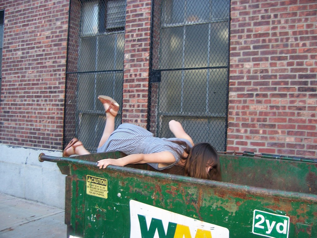 dumpster diving essay on dumpster diving college of southern idaho