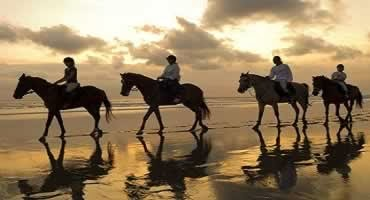 Bali Horse Riding Tour