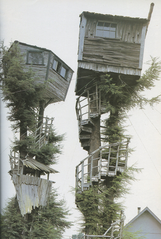 Treehouses by Peter Nelson | Sycamore