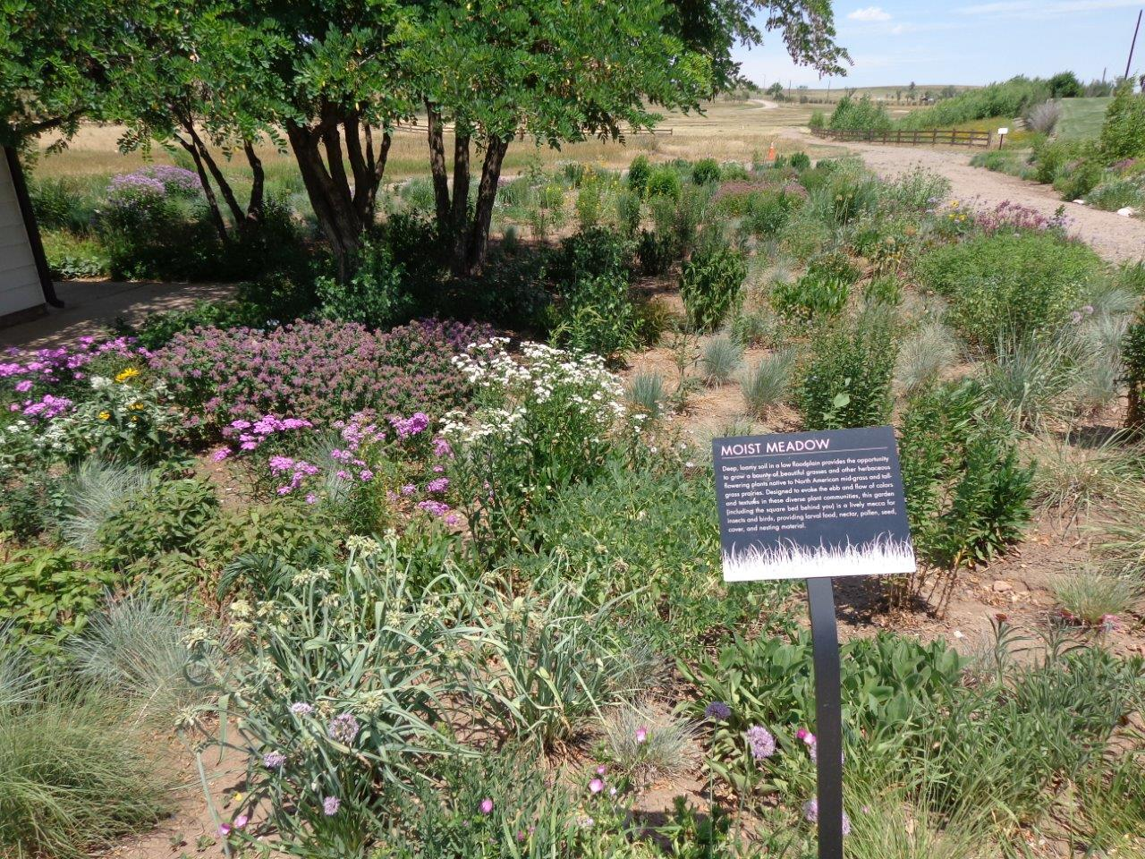 Travels Without Charley Enjoying Steinbeck 39 S America 7 4 Denver Botanic Gardens At Chatfield
