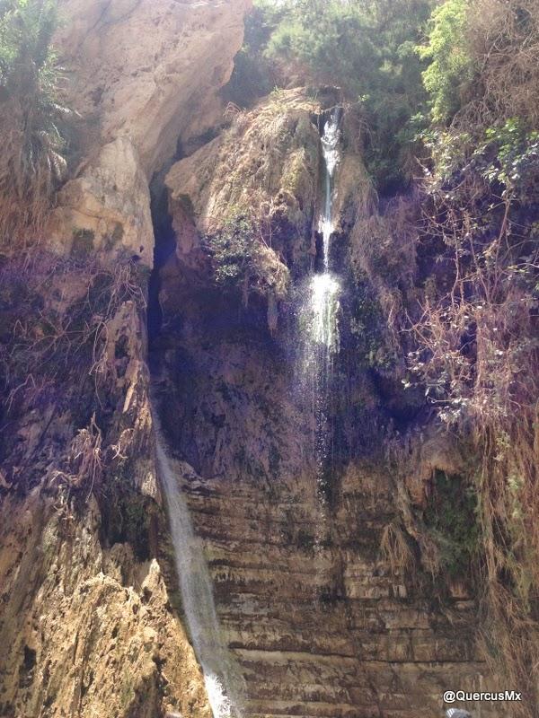 Cascada de David en Wadi David