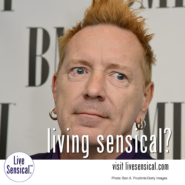 Johnnie Rotten - Sex Pistols - Living Sensical? http://livesensical.com
